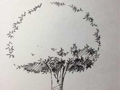 速写风景画法 大树速写画的手绘步骤