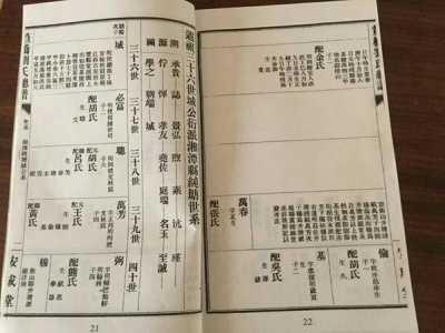 刘强东祖籍湖南 刘强东寻祖