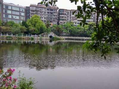 """柳岩是衡阳什么地方的 湖南""""第七大""""城市"""